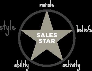Style sales star - sales coaching method