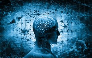 Brain Science and Decision Making